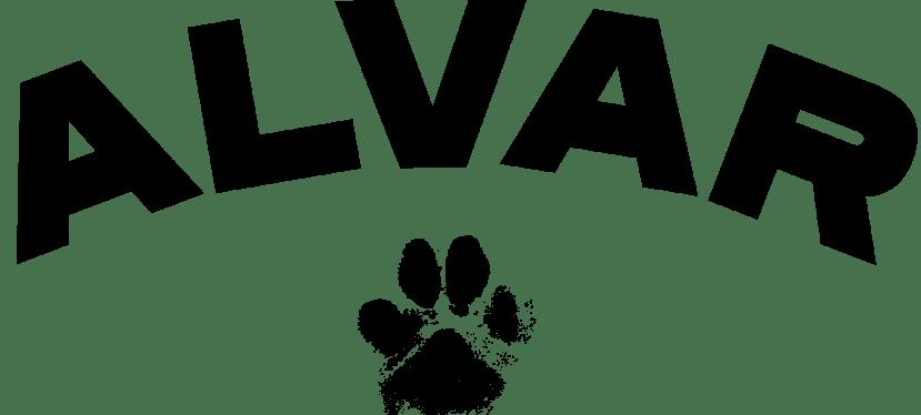 Distriktmästerskap Lydnad – Piirimestaruuskisat TOKO
